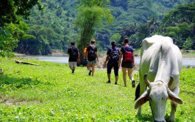 A la découverte des Tuay Falls