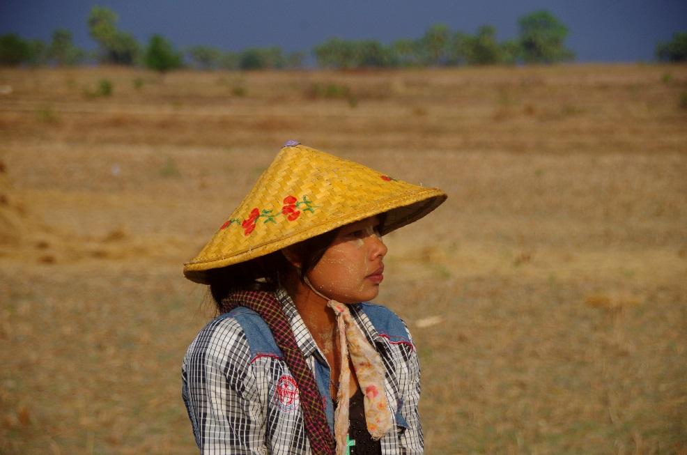 Photo et Vidéo de Te Gyi au Myanmar
